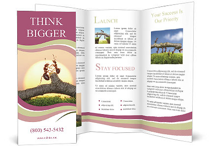 0000091838 Brochure Template