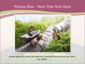 Two ants on sunset PowerPoint Template - Slide 16