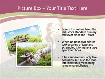 Two ants on sunset PowerPoint Template - Slide 20