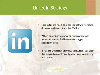 Cat PowerPoint Templates - Slide 12