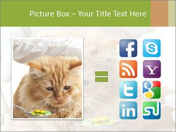 Cat PowerPoint Template - Slide 21