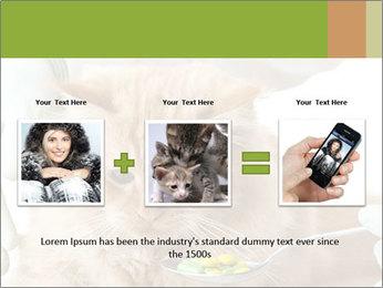 Cat PowerPoint Template - Slide 22