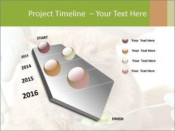 Cat PowerPoint Templates - Slide 26