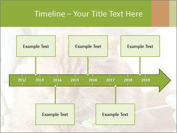 Cat PowerPoint Templates - Slide 28