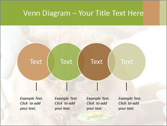 Cat PowerPoint Templates - Slide 32