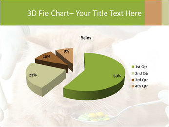 Cat PowerPoint Template - Slide 35