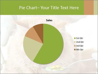 Cat PowerPoint Templates - Slide 36