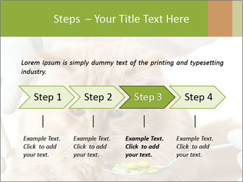 Cat PowerPoint Templates - Slide 4
