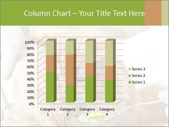 Cat PowerPoint Templates - Slide 50