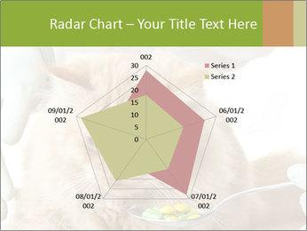 Cat PowerPoint Templates - Slide 51