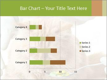 Cat PowerPoint Templates - Slide 52