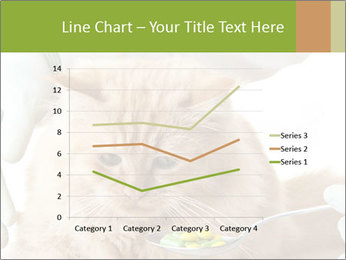 Cat PowerPoint Templates - Slide 54