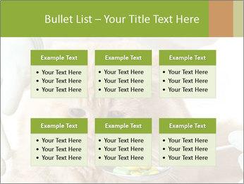 Cat PowerPoint Templates - Slide 56