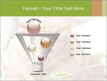 Cat PowerPoint Template - Slide 63