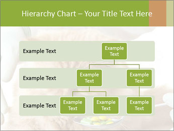 Cat PowerPoint Templates - Slide 67