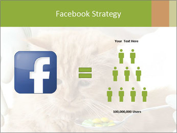 Cat PowerPoint Templates - Slide 7