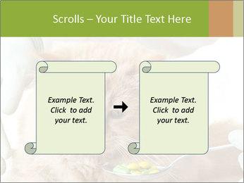 Cat PowerPoint Templates - Slide 74
