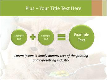 Cat PowerPoint Templates - Slide 75
