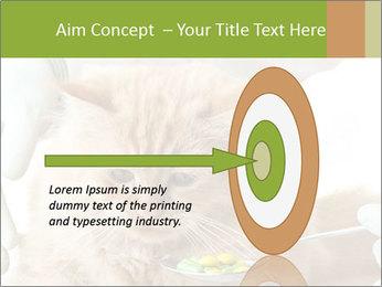 Cat PowerPoint Templates - Slide 83