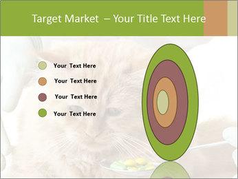 Cat PowerPoint Templates - Slide 84