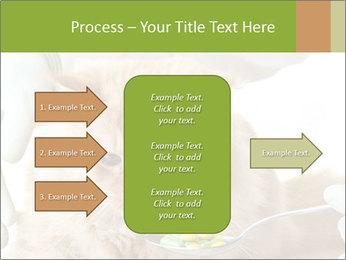 Cat PowerPoint Templates - Slide 85