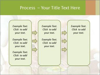 Cat PowerPoint Templates - Slide 86