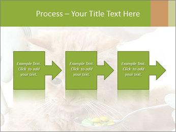 Cat PowerPoint Templates - Slide 88