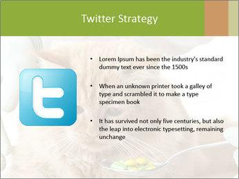 Cat PowerPoint Templates - Slide 9