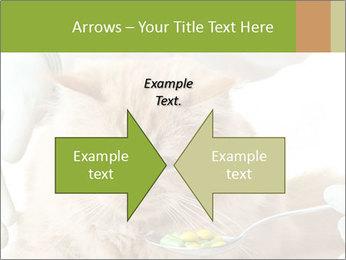 Cat PowerPoint Templates - Slide 90