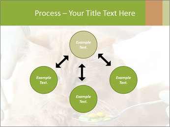 Cat PowerPoint Templates - Slide 91