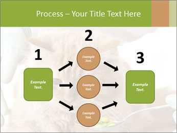 Cat PowerPoint Templates - Slide 92