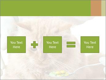 Cat PowerPoint Templates - Slide 95