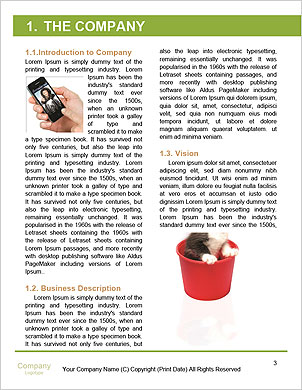 0000091841 Word Template - Page 3