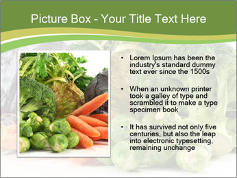 0000091842 PowerPoint Template - Slide 13