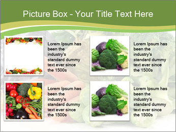 0000091842 PowerPoint Template - Slide 14