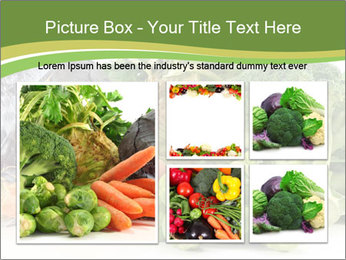 0000091842 PowerPoint Template - Slide 19