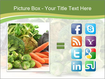 0000091842 PowerPoint Template - Slide 21