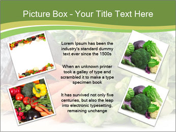 0000091842 PowerPoint Template - Slide 24