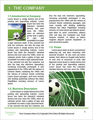 0000091844 Word Template - Page 3