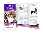 0000091852 Brochure Templates