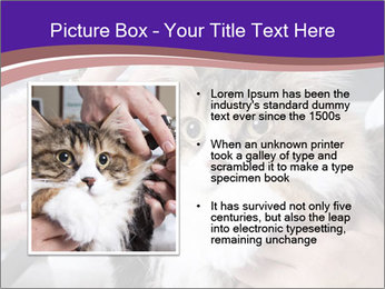 Trimming cat's PowerPoint Template - Slide 13