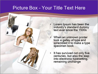 Trimming cat's PowerPoint Template - Slide 17