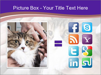 Trimming cat's PowerPoint Template - Slide 21