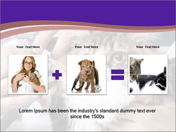 Trimming cat's PowerPoint Template - Slide 22