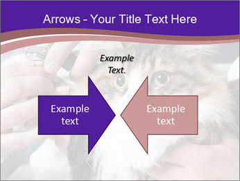 Trimming cat's PowerPoint Template - Slide 90