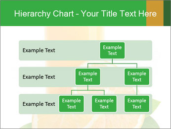 Orange juice PowerPoint Template - Slide 67