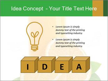 0000091853 PowerPoint Template - Slide 80