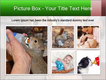 Squirrel PowerPoint Templates - Slide 19