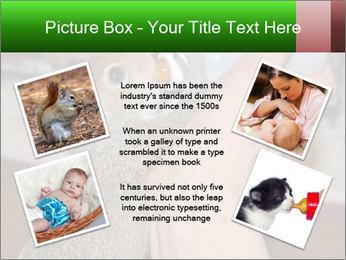 Squirrel PowerPoint Templates - Slide 24