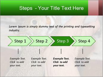 Squirrel PowerPoint Templates - Slide 4